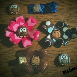 "I love owls!  And had to pick up a package of these adorable ""buttons"" to make some new clips."